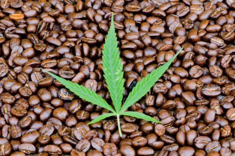 hemp-coffee-750x500